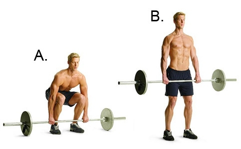 Image result for deadlift muscle groups